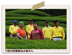 池川茶業組合の皆さん