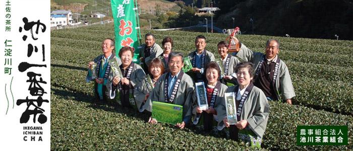 link-ikegawacha